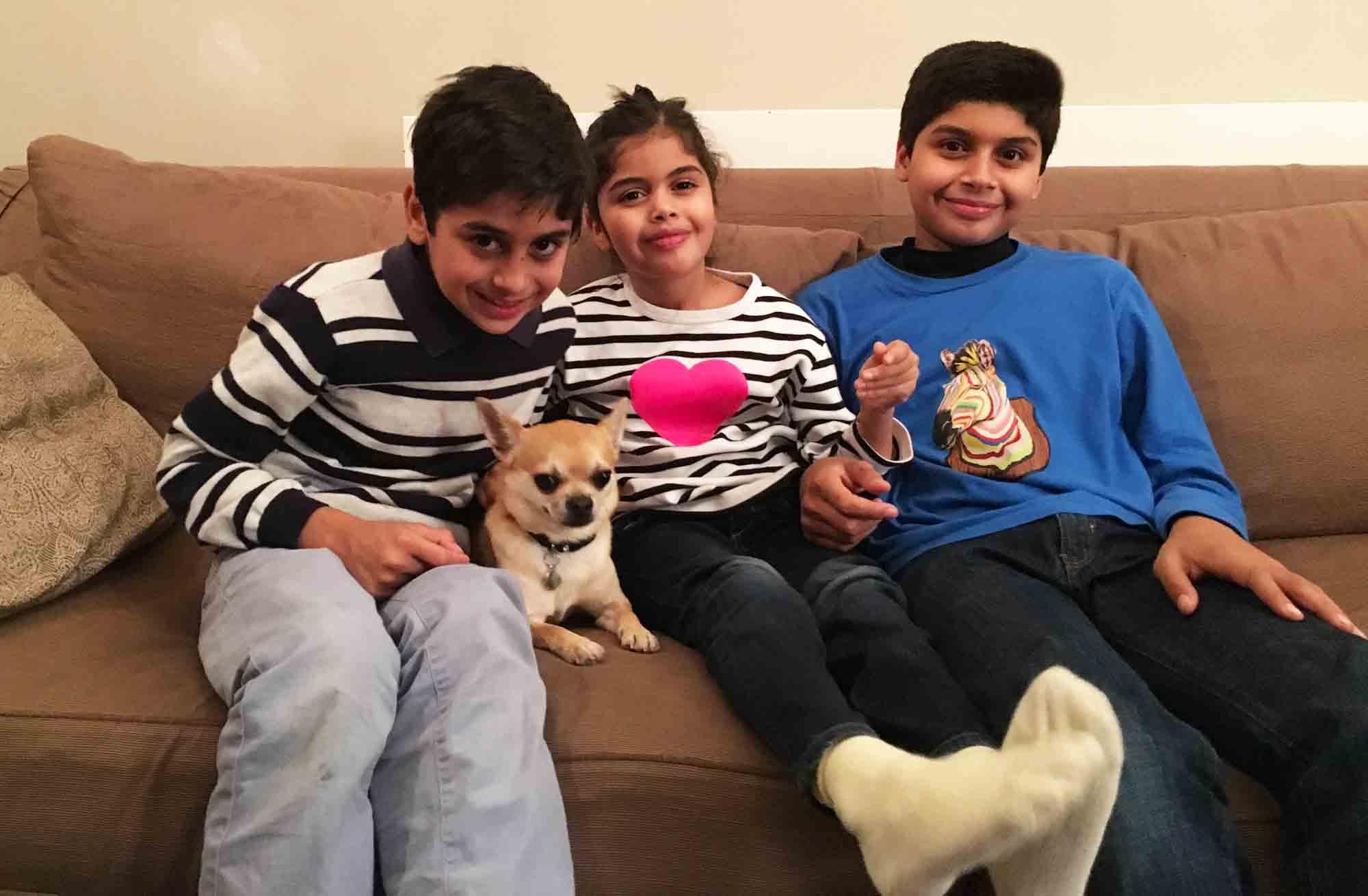Dog Blog Family Style