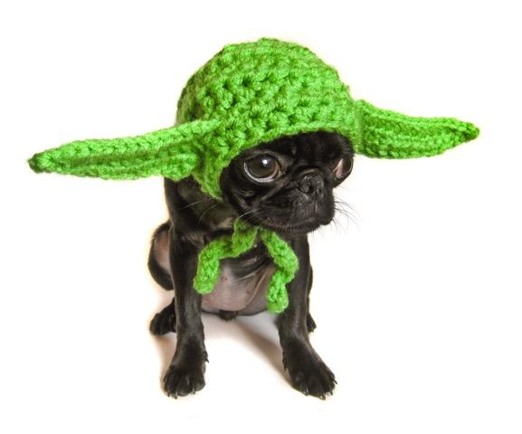 Yoda Dog Hat
