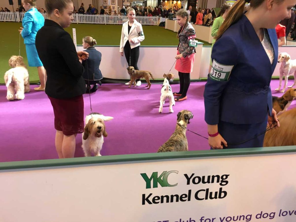 Young Kennel Club