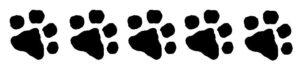 Chilliwawa 5 paws rating!