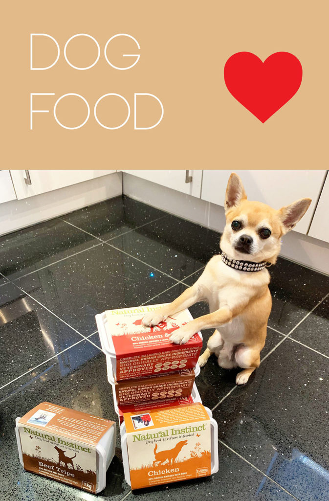All about dog food