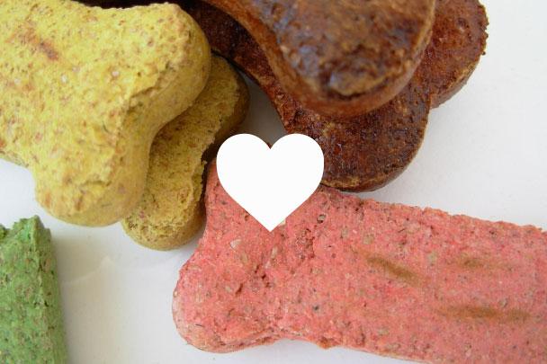 What is a hypoallergenic dog diet?