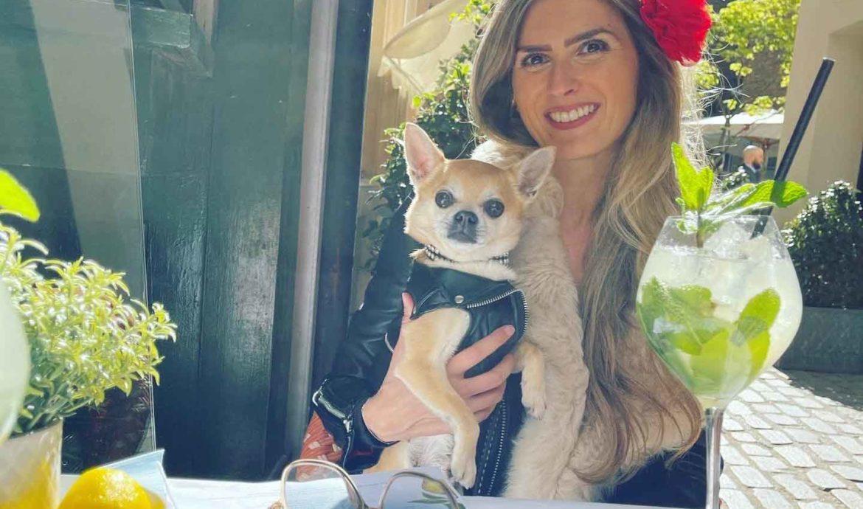 Hush Mayfair, a dog friendly restaurant gem!