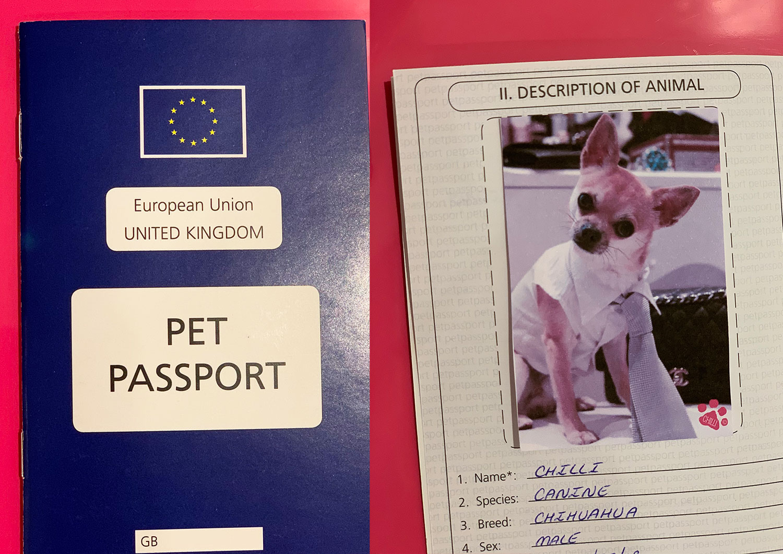 Dog pet passport